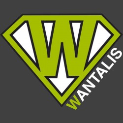 Logo marque Wantalis