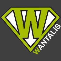 Logo marque Wantalis Xtens