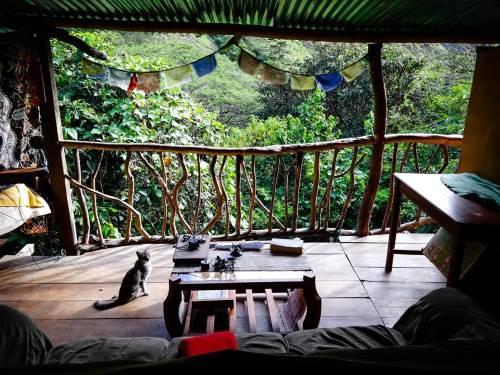 Direction l'Equateur et la région de Vilcabamba : nos aventurières trouvent refuge dans une ferme organique