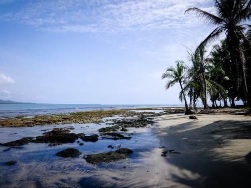 Nos aventurières Léa et Lili ne restent que le temps d'une courte escale au Costa Rica