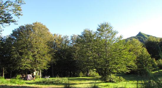 Notre aventurier installe son campement aux abords du Plomb du Cantal