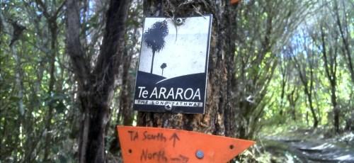 Une balise ou un panneau de signalisation du Te Araroa Trek est relativement facile à repérer.